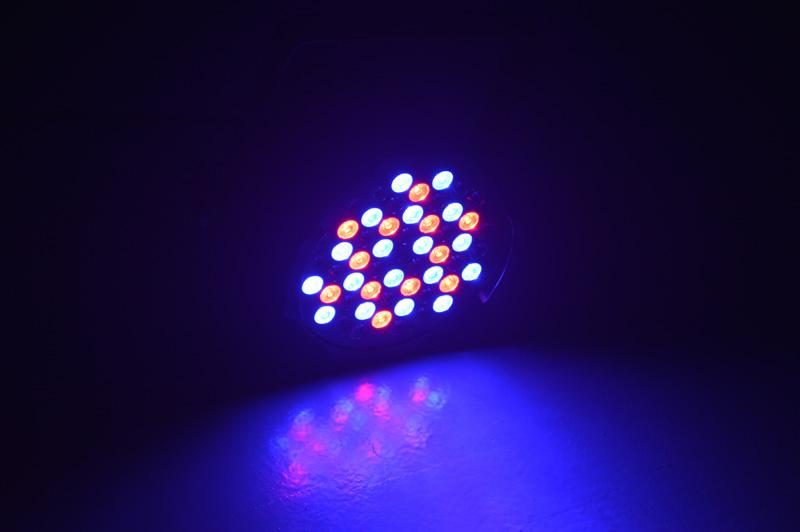 STSLITE mini par led cob dj for pub-10